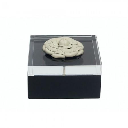 Camelia box L